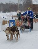 dog SLEDDING!!